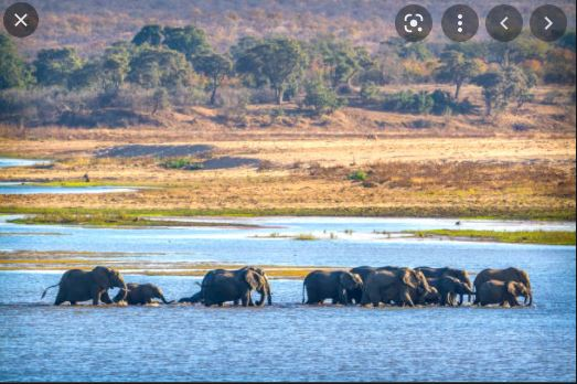 The Limpopo River