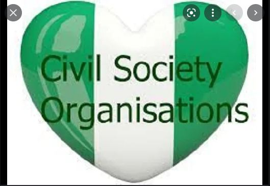 What Are The Top 5 Functions Of Civil Society In Nigeria